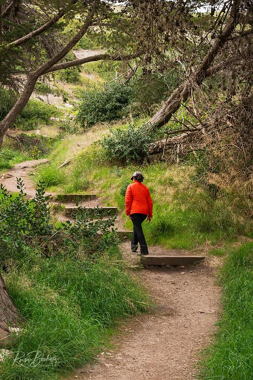 Hiker on the Cavern Point trail, Santa Cruz Island, Channel Islands National Park, California USA