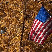 American Flag on the Esplanade in Chico, CA