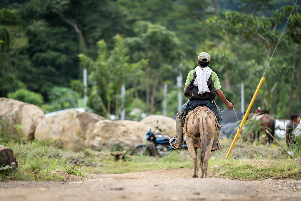 16 November 2018, San José de León, Mutatá, Antioquia, Colombia: A young man rides a horse through the community in San José de León. Following the 2016 peace treaty between FARC and the Colombian government, a group of ex-combatant families have purchased and now cultivate 36 hectares of land in the territory of San José de León, municipality of Mutatá in Antioquia, Colombia. A group of 27 families first purchased the lot of land in San José de León, moving in from nearby Córdoba to settle alongside the 50-or-so families of farmers already living in the area. Today, 50 ex-combatant families live in the emerging community, which hosts a small restaurant, various committees for community organization and development, and which cultivates the land through agriculture, poultry and fish farming. Though the community has come a long way, many challenges remain on the way towards peace and reconciliation. The two-year-old community, which does not yet have a name of its own, is located in the territory of San José de León in Urabá, northwest Colombia, a strategically important corridor for trade into Central America, with resulting drug trafficking and arms trade still keeping armed groups active in the area. Many ex-combatants face trauma and insecurity, and a lack of fulfilment by the Colombian government in transition of land ownership to FARC members makes the situation delicate. Through the project De la Guerra a la Paz ('From War to Peace'), the Evangelical Lutheran Church of Colombia accompanies three communities in the Antioquia region, offering support both to ex-combatants and to the communities they now live alongside, as they reintegrate into society. Supporting a total of more than 300 families, the project seeks to alleviate the risk of re-victimization, or relapse into violent conflict.