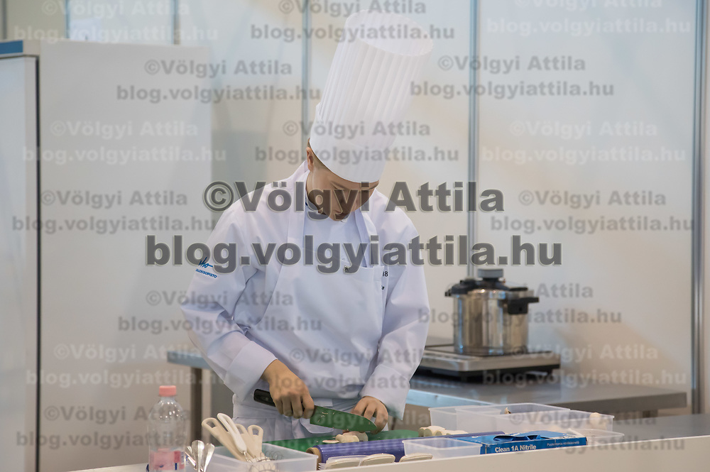 Participant competes in cooking during the EuroSkills European Championship of young professionals in Budapest, Hungary on Sept. 26, 2018. ATTILA VOLGYI