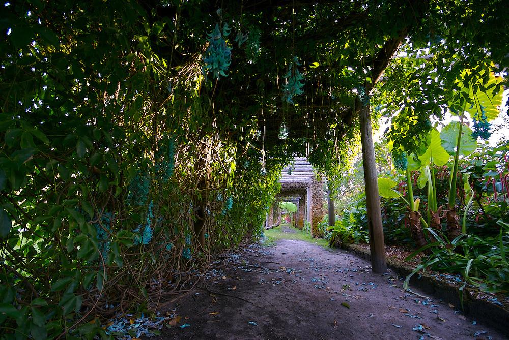 View of Pergola in Miami Fairchild Tropical Garden,