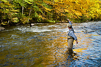 Jay Erison sets the hook while fly fishing for trout on the upper Connecticut River in northern New Hampshire.