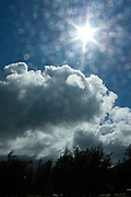 Sunburst and sparkling raindrops