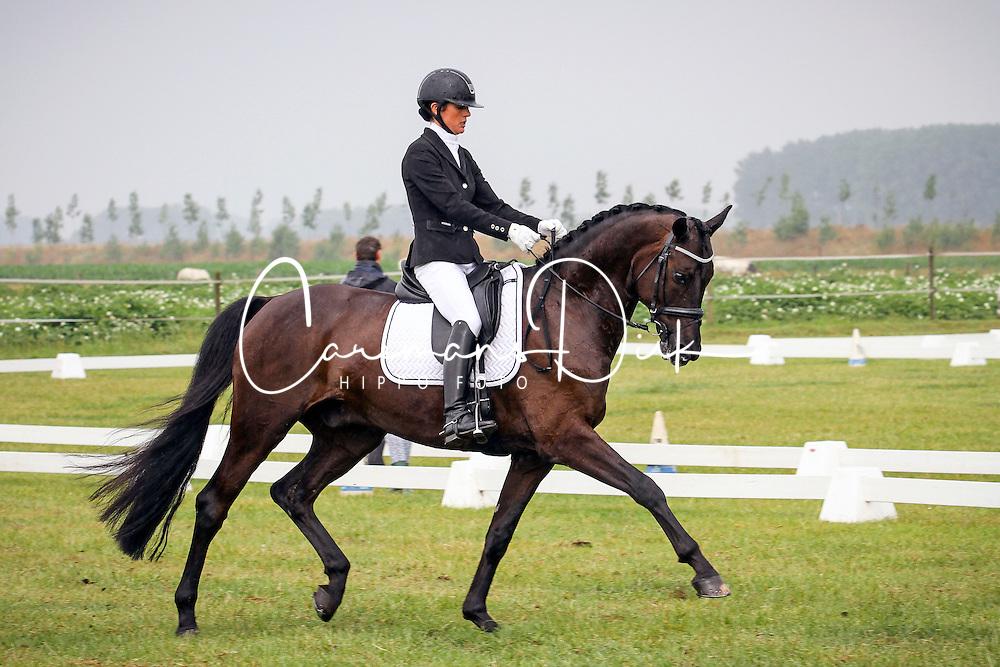 Smits Vicky (BEL) - Safier van de Wulfsdam<br /> SBB competitie jonge paarden - Nationaal Kampioenschap - Kieldrecht 2014<br /> © Hippo Foto