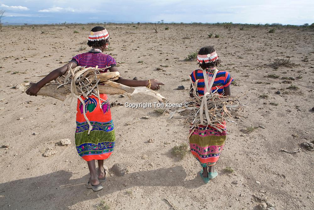 Ethiopian girls collect firewood