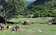 A haystack stands in a field in the Theth valley.  Theth, Thethi, Albania. 03Sep15