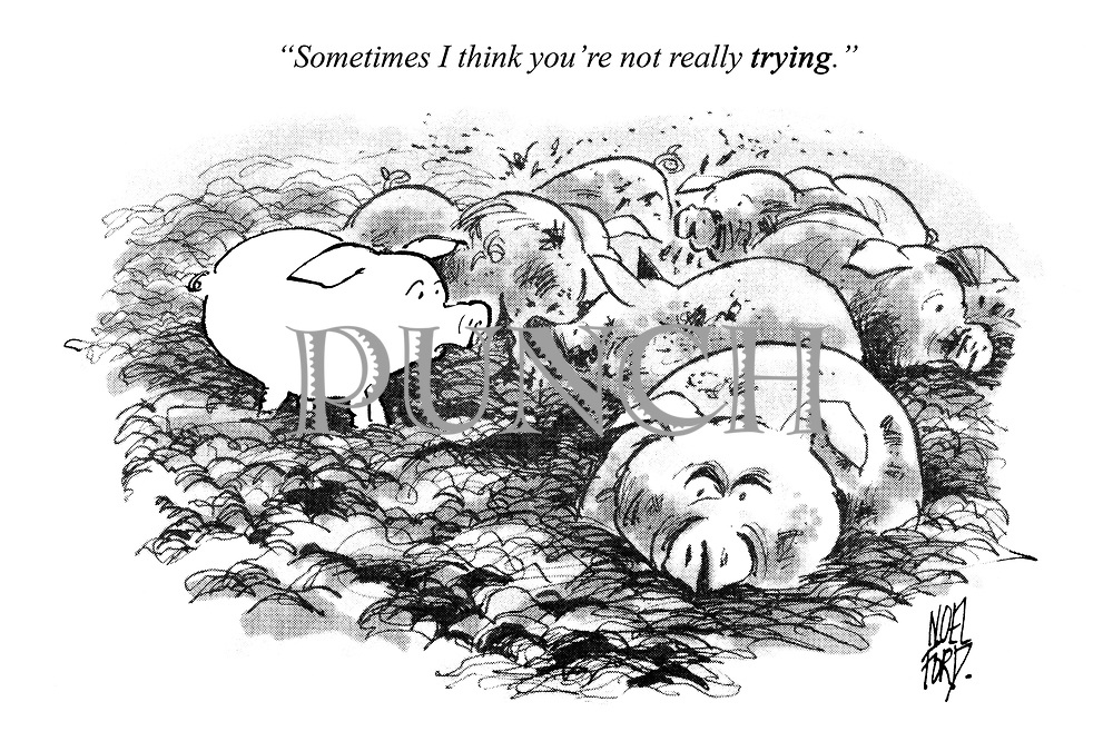 """""""Sometimes I think you're not really trying."""""""