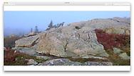 Cadillac Mountain at Acadia National Park, Maine, USA