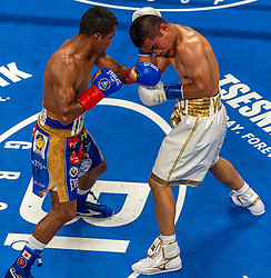 """NEW YORK, NY - OCT 17: Roman """"chocolatito"""" Gonzalez 44-0 (38 KOs) stopped Brian Viloria 37-5 (22 KOs) in the 9th round after referee Benjy Esteves Jr. stopped the bout at 2 minutes 53 seconds  of the ninth saturday at Madison Square Garden on 17 October, 2015 in New York, NY USA. Byline, credit, TV usage, web usage or linkback must read SILVEXPHOTO.COM. Failure to byline correctly will incur double the agreed fee. Tel: +1 714 504 6870."""