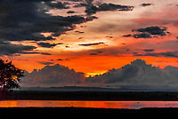 Sunset over the Albert Nile RIver, Murchison Falls National Park, Uganda.