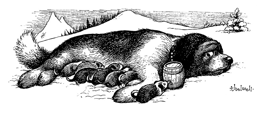 (A St Bernard puppy suckles at its mother's brandy barrel)