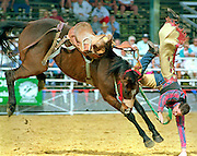 A cowboy gets thrown from his horse during the Arcadia Rodeo. Photo / Scott Iskowitz