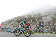 Rafal Majka (POL, Bora Hansgrohe) during the 73th Edition of the 2018 Tour of Spain, Vuelta Espana 2018, Stage 15 cycling race, 15th stage Ribera de Arriba - Lagos de Covadonga 178,2 km on September 9, 2018 in Spain - Photo Kei Tsuji/ BettiniPhoto / ProSportsImages / DPPI