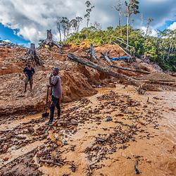 Fea0093883. DT News.Tananarive a mining village near AMBATONDRAZAKA,The Ankeniheny-Zahamena Corridor, Madagascar.Pic Shows miners  looking for sapphires in the village of Tananarive work amongst felled trees