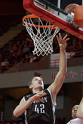 29 December 2014:  Evan McGaughey during an NCAA non-conference interdivisional exhibition game between the Quincy University Hawks and the Illinois State University Redbirds at Redbird Arena in Normal Illinois.
