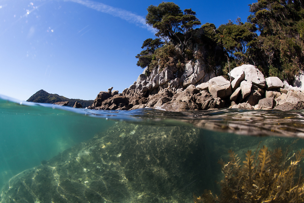 Over/Under view of the coast line of Abel Tasman National Park, New Zealand.