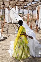 Inde, Rajasthan, usine de sari. // India, Rajasthan, sari factory