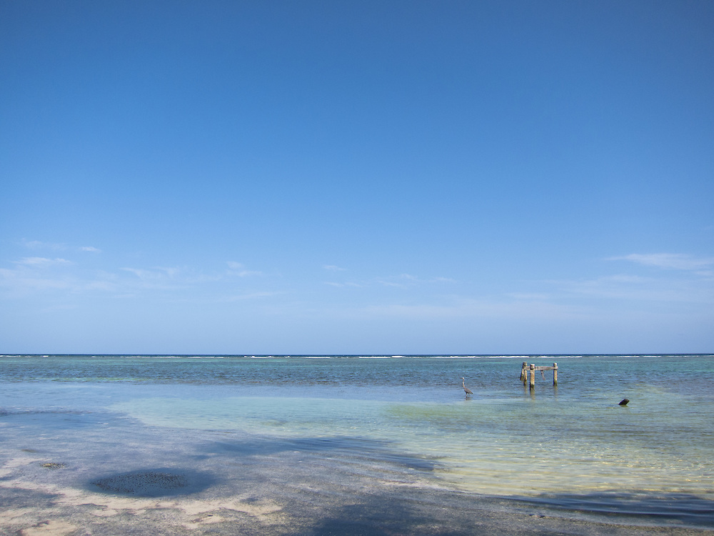 Ambergris Caye, Belize 8/31/2012.Walking up the beach in the Bacalar Chico National Park..Alex Jones / www.alexjonesphoto.com