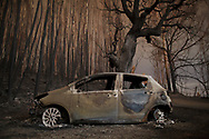 LEIRIA, PORTUGAL - JUNE 18:  A burned car stand next to a forest after a wildfire took dozens of lives on June 18, 2017 near Castanheira de Pera, in Leiria district, Portugal. On Saturday night, a forest fire became uncontrollable in the Leiria district, killing at least 62 people and leaving many injured. Some of the victims died inside their cars as they tried to flee the area.  (Photo by Pablo Blazquez Dominguez/Getty Images)