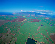 Sugar Cane Fields, Maui, Hawaii, USA<br />