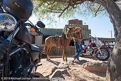 Western scene at the Buffalo Chip in Cavecreek, AZ during Arizona Bike Week. USA. April 6, 2014.  Photography ©2014 Michael Lichter.