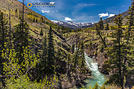 Falls Creek in the Lewis and Clark National Forest, Montana, USA