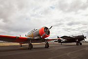 Harvard and Wildcat at Warbirds Over the West.