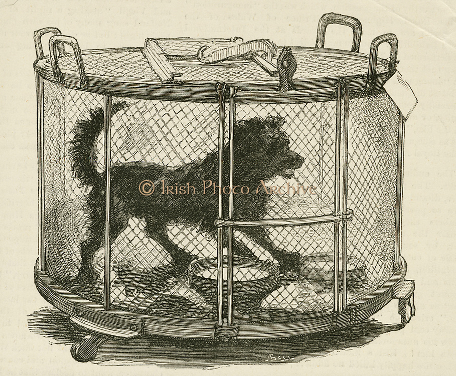 'Cage containing inoculated used by Louis Pasteur (1822-1895) during his work on Hydrophobia (Rabies)  at the Ecole Normale, Paris.  Engraving, London, 1885.'