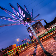 The new public art at 31st and Troost implemented along with the new MAX bus rapid transit line and its shelters. Same intersection the Troost Festival takes place at in May.