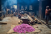 Inde, Uttar Pradesh, la ville des parfums où sont distillé les roses pour l'industrie du parfum // India, Uttar Pradesh, the city of perfumes where roses are distilled for the perfume industry