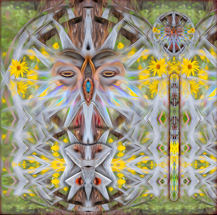 """""""Wagonwheel Peacekeeper"""", derivative image created from a photo of a wagonwheel and balsamroot wildflowers, spring, Methow Valley, Washington USA"""