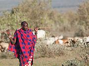 Maasai tribesman, Oyaratta village near Maasai Mara National Park, Kenya
