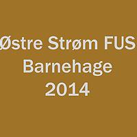 2014_Østre_Strøm_BHG