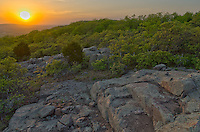 These natural steps are on the top of Bald Knob in the Ozark Mountains of Missouri. The newly green trees were catching the golden rays from the setting sun.<br />