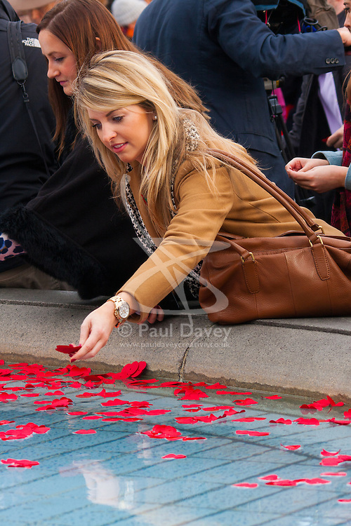Trafalgar Square, London, November 11th 2014. Hundreds gather in Trafalgar Square to listen to performances by Britain's Got Talent winners Collabro, folk duo The Shires, New Zealand musical trio Sol3 Mio, London Welsh Male Voice Choir, ahead of two minutes silence at 11 am to mark the end of World War One 96 years ago. Among the crowd were ex servicemen and women, school children and tourists. PICTURED: A woman throws petals into the fountain at Trafalgar Square.