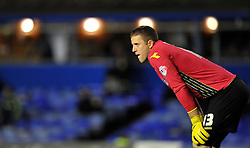 Birmingham City's Colin Doyle -  - Photo mandatory by-line: Alex James/JMP - Tel: Mobile: 07966 386802 29/10/2013 - SPORT - FOOTBALL - ST Andrew's - Birmingham - Birmingham City v Stoke City - Capital One Cup - Forth Round