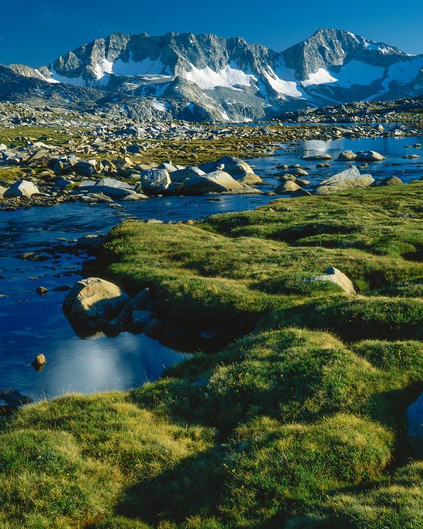 Pioneer Basin, summer, John Muir Wilderness, California, USA