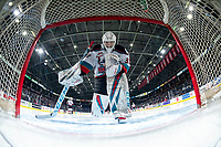 KELOWNA, BC - FEBRUARY 7: Cole Schwebius #31 of the Kelowna Rockets kneels in net against the Portland Winterhawks at Prospera Place on February 7, 2020 in Kelowna, Canada. (Photo by Marissa Baecker/Shoot the Breeze)