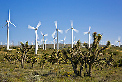 Wind farms in Southern California