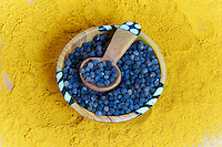 Tanzanie, archipel de Zanzibar, île de Unguja (Zanzibar), jardin des epices, poivre noir et curcuma  // Tanzania, Zanzibar island, Unguja, spice garden, black peper and curcuma