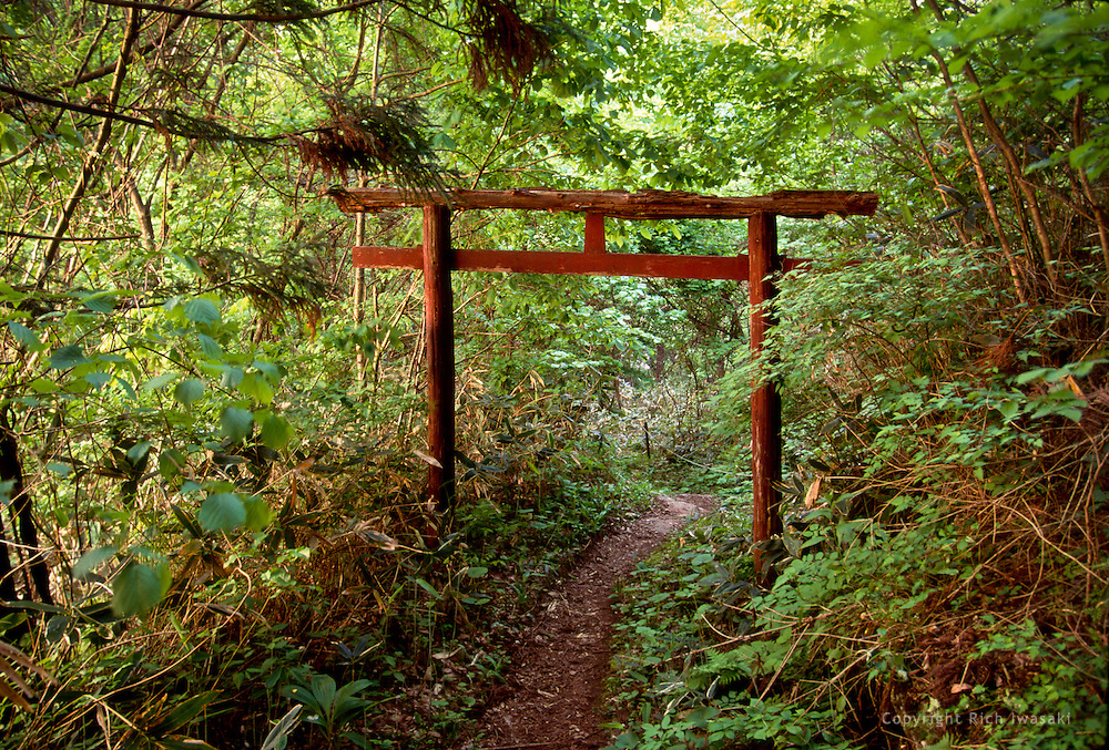 Aged wood torii (gateway) in rural area of Tohoku region, near Tono, Iwate Prefecture, Japan