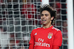 February 6, 2019 - Lisbon, Portugal - Benfica's Portuguese forward Joao Felix during the Portugal Cup Semifinal first leg football match SL Benfica vs Sporting CP at Luz stadium in Lisbon, on February 6, 2019. (Credit Image: © Pedro Fiuza/ZUMA Wire)