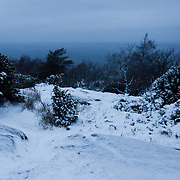 The snowy landscape on Hammer Knude and the route of the run. Salomon Hammer Trail Winter Edition is a first on Bornholm and is one of the toughest routes in Denmark. The 4 runs consist of a 50 mile run, a marathon, a 1/2 marathon and 10k all run a on an approximate 25km route which includes 860 meter vertical rise on the North East coast of the Danish island Bornholm. The cut-off time for the 50mile run was 16 hours and more than a hundred runners made it to the finishing line. The last runner across the line after 50 miles  was in after 15:14:40