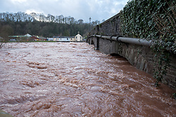 © Licensed to London News Pictures. 16/02/2020. Usk, Monmouthshire, UK. Storm Dennis. Very high river levels under the bridge at Usk have closed the A472 at County Hall. There has been severe flooding in South Wales. Photo credit: Simon Chapman/LNP.