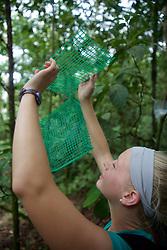 Rachel Streich Measuring Amount Of Light Vs Cover, Tiputini