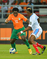 Wifried Bony  ( Cote D Ivoire )