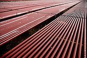Israel, Eilat, an industrial facility for growing red algae Rhodophyta