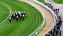 Runners and riders in the Pertemps Network Handicap Hurdle Race during day two of the Showcase at Cheltenham Racecourse