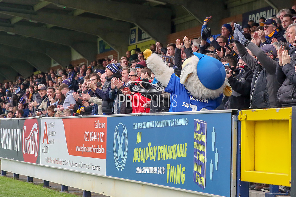 Haydon the Womble celebrating after goal during the EFL Sky Bet League 1 match between AFC Wimbledon and Accrington Stanley at the Cherry Red Records Stadium, Kingston, England on 6 April 2019.