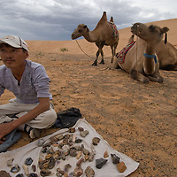 Bactrian camels wait as a traveling vendor displays minerals for sale to tourists in the southern Gobi Desert, Mongolia.